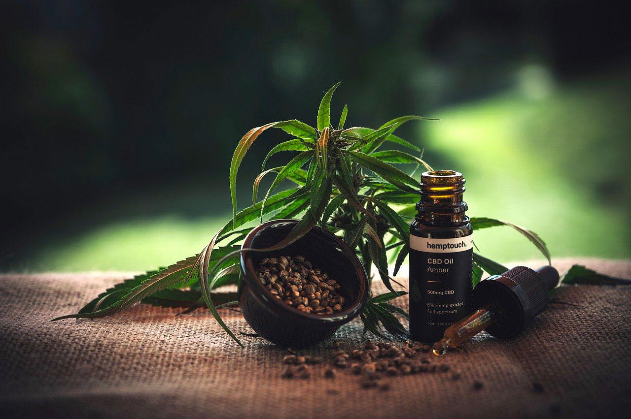 Ferme CBD : un produit naturel et bienfaisant qui ne cesse de grandir et se développer